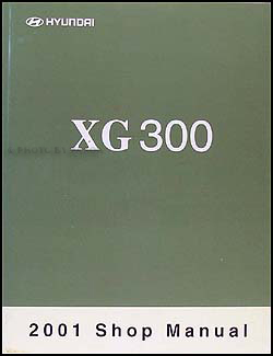 2001 hyundai xg 300 reprint electrical troubleshooting manual. Black Bedroom Furniture Sets. Home Design Ideas
