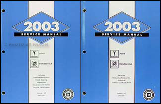 2003 Aztek & Rendezvous Repair Manual Original 2 Volume Set